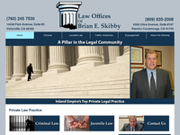 BRIAN SKIBBY website screenshot