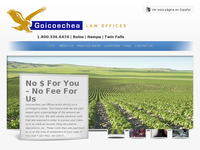 JERRY GOICOECHEA website screenshot