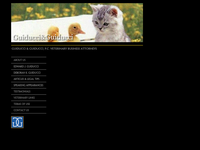 EDWARD GUIDUCCI website screenshot