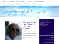 LESLEY SCHWARTZ website screenshot