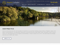 LAWRENCE MARGOLIS website screenshot