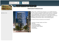 PAUL WOOLLS website screenshot