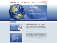 ANA ZIGEL website screenshot